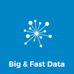 Big & Fast Data
