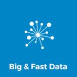 Big & Fast Data